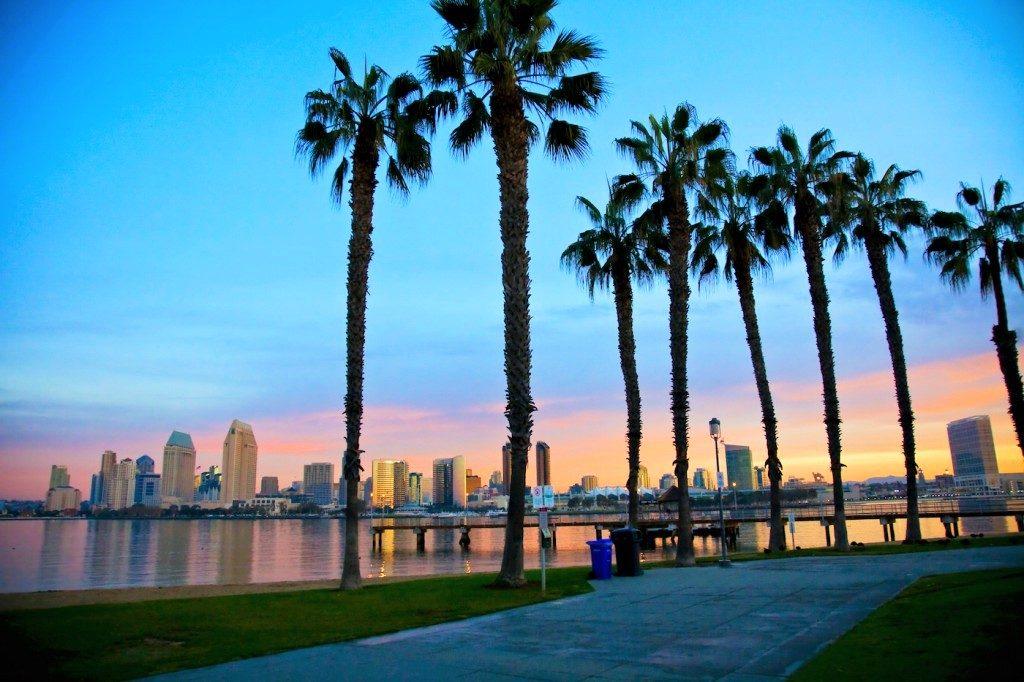 サンディエゴ2
