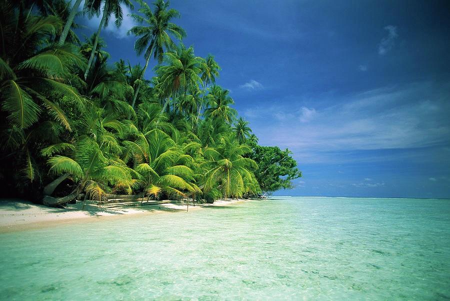 パプアニューギニア3