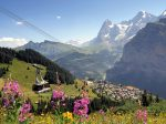 murren_eye