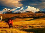mongolia_eye