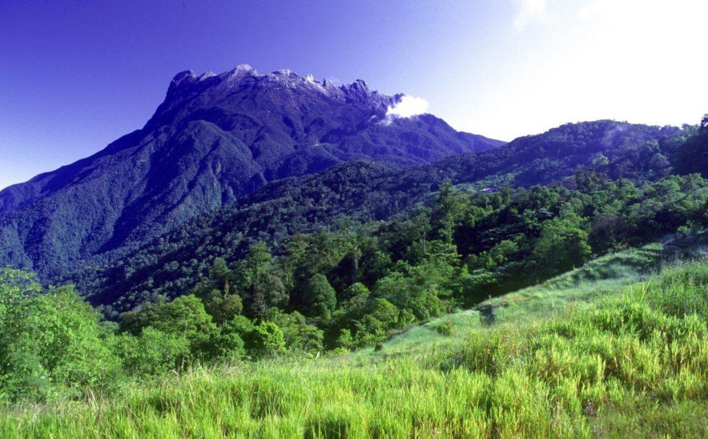 Kinabalu Park_eye