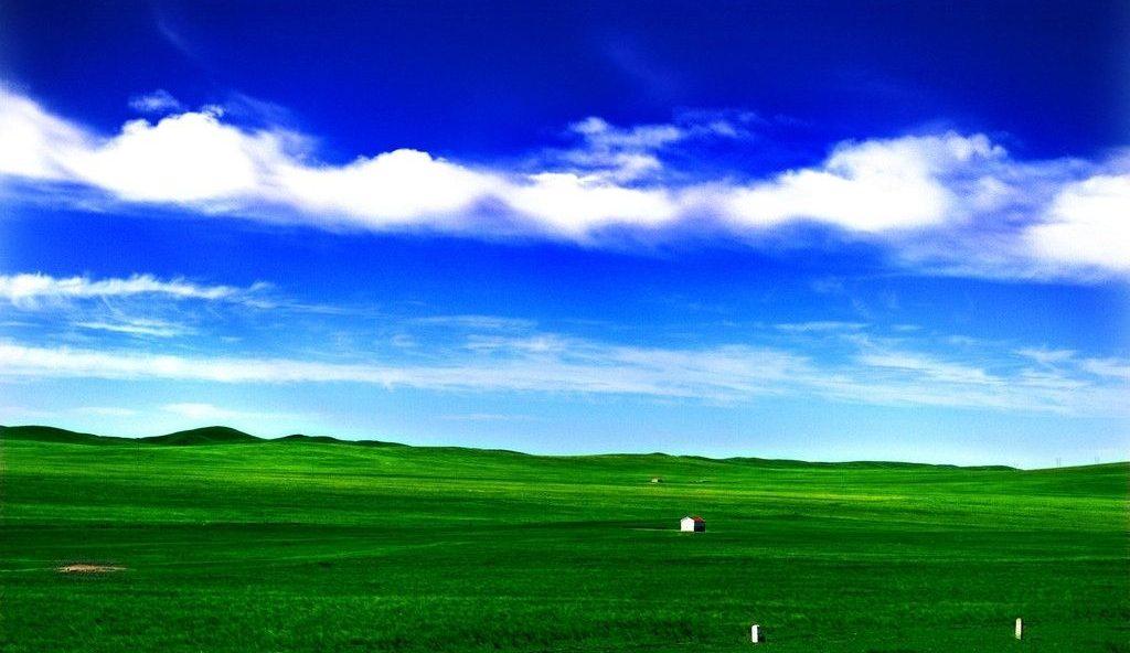 モンゴルの大草原