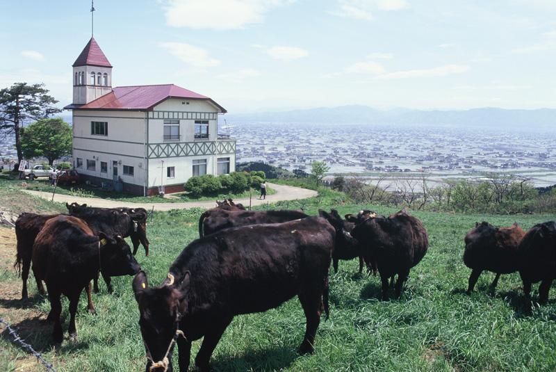 富山県47