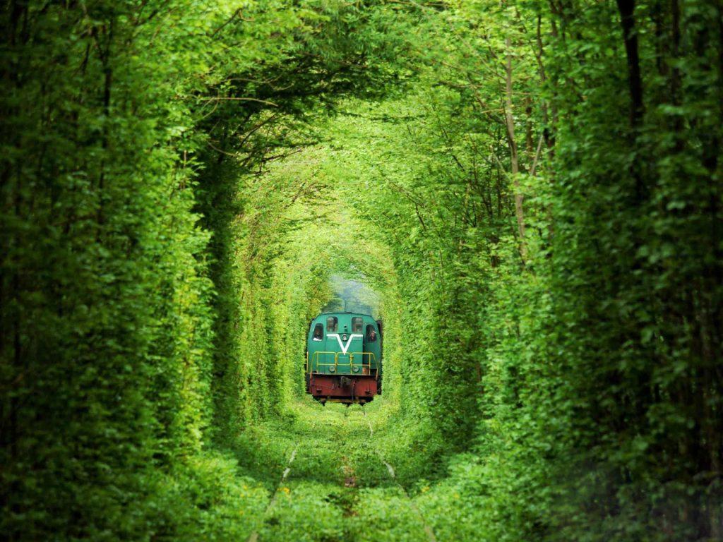 55愛のトンネル3