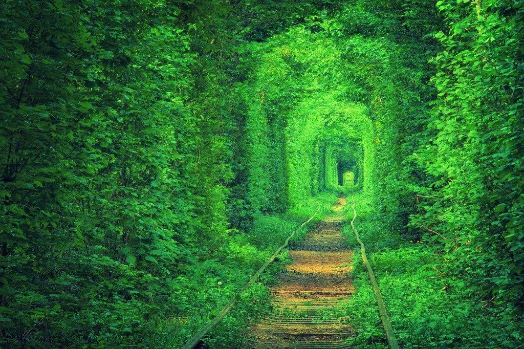 55愛のトンネル5