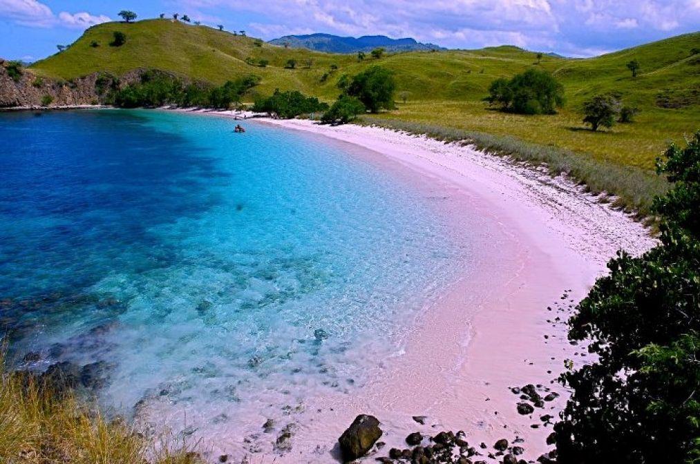 ピンクサンドビーチ インドネシア2