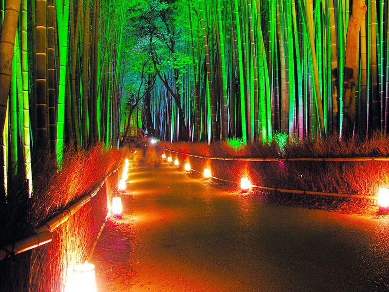 京都 デート5