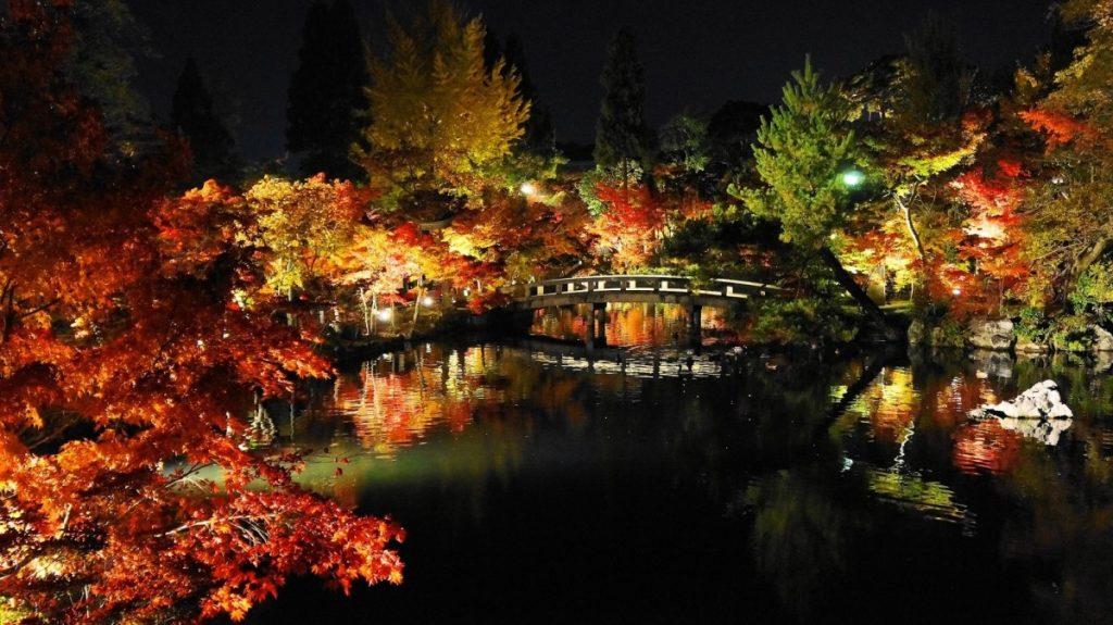 京都 ライトアップ2