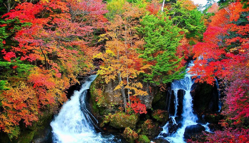 竜図の滝1