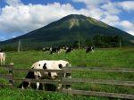 鳥取県 大山まきばみるくの里