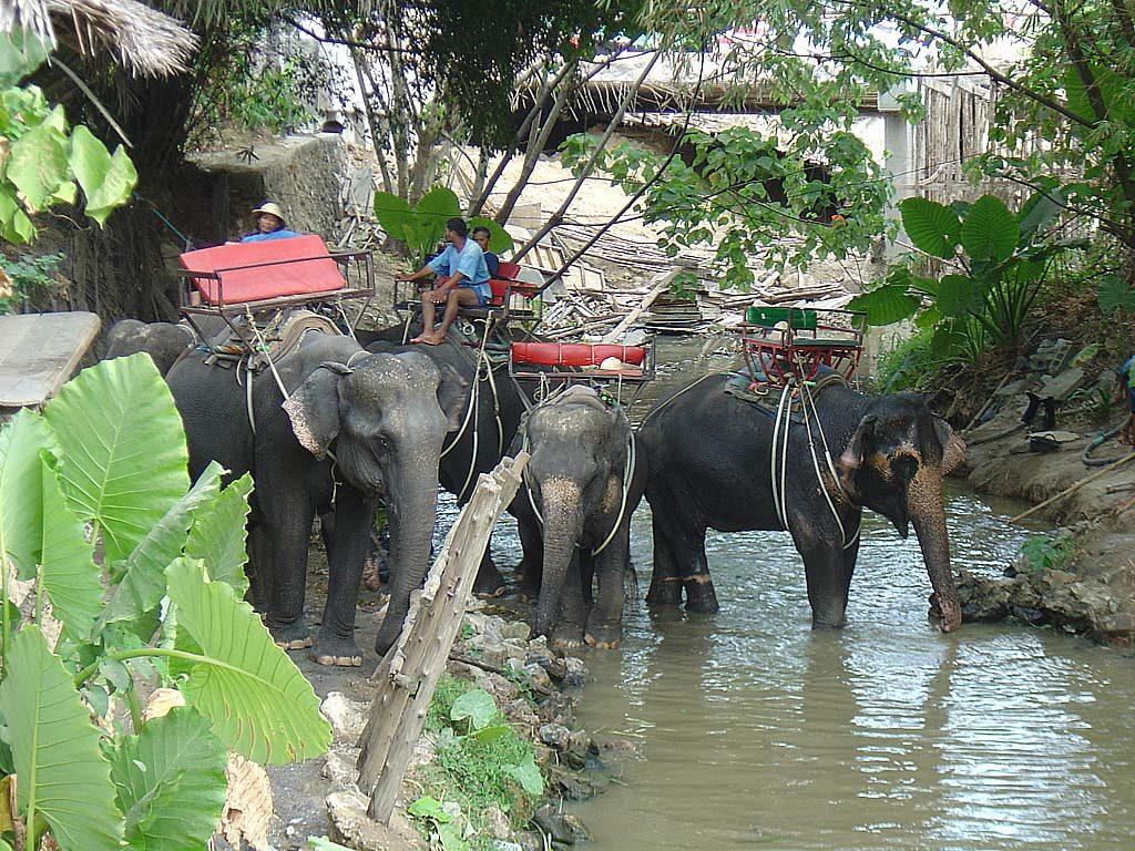 Phuket_6