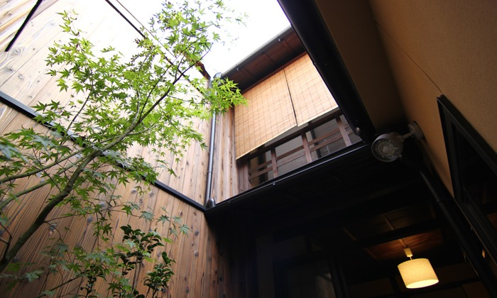 Sakura_an