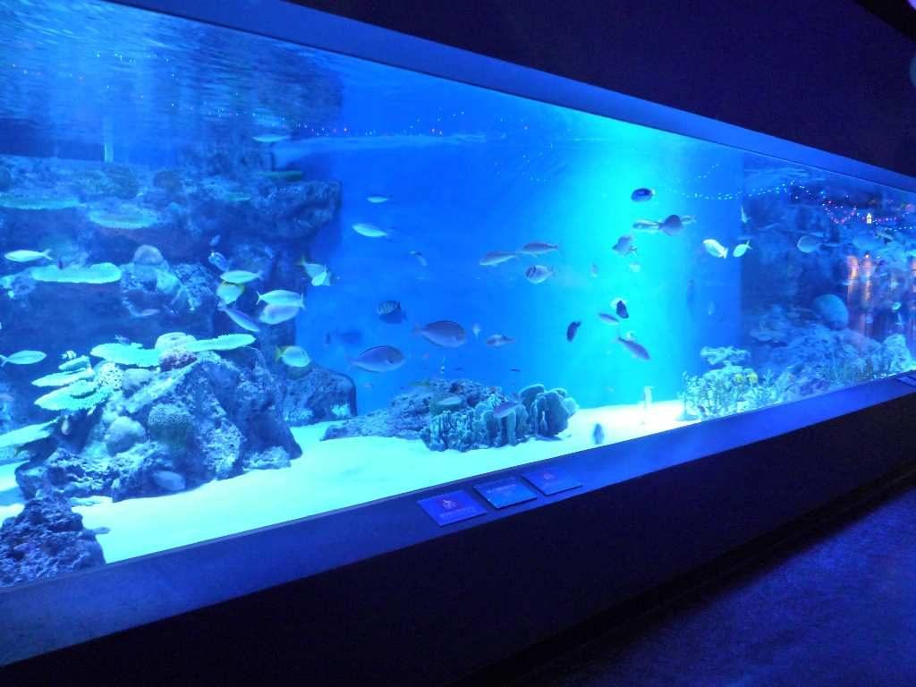 aquapark_10.2