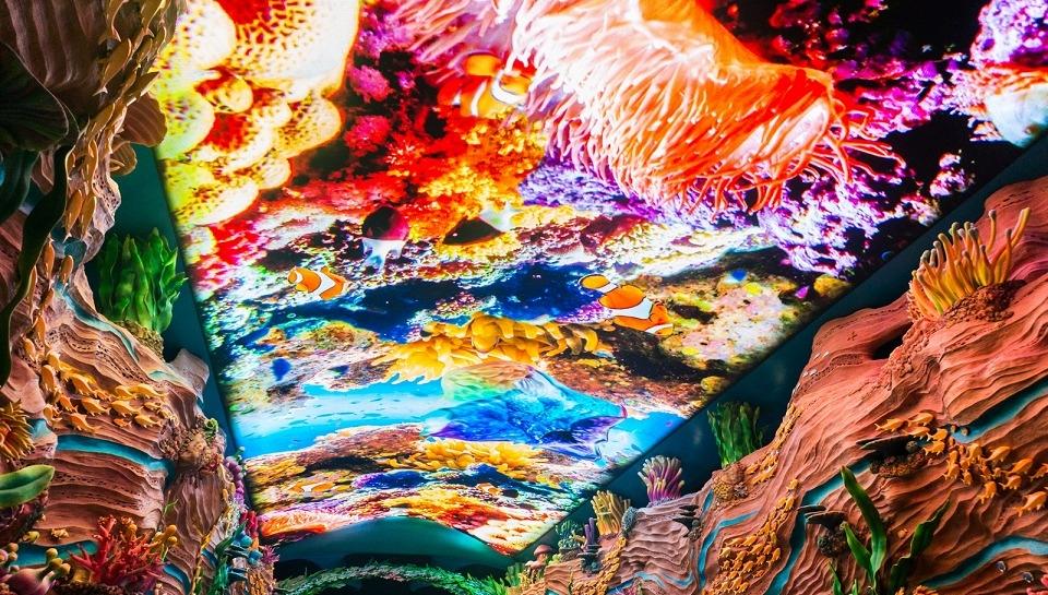 aquarium_3.2