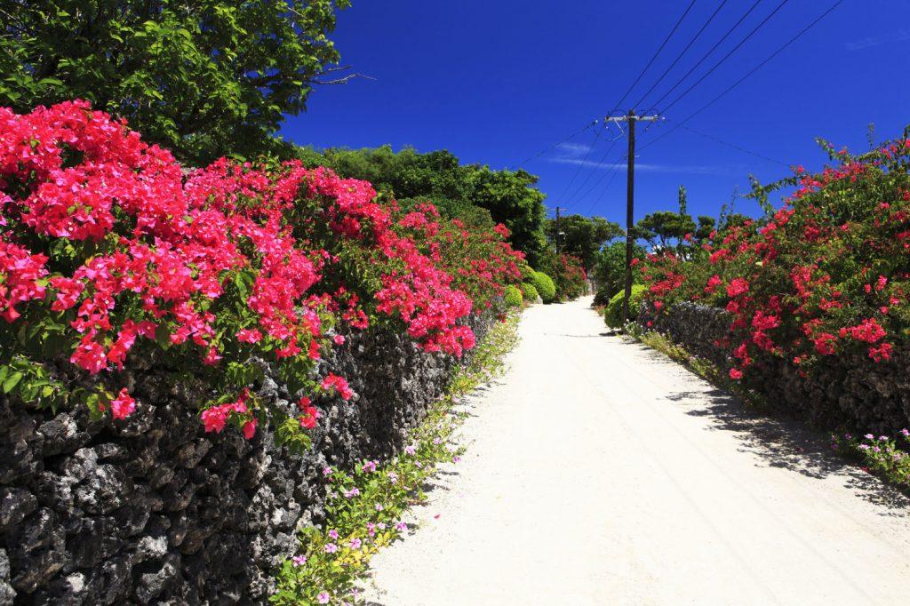 Okinawa_99