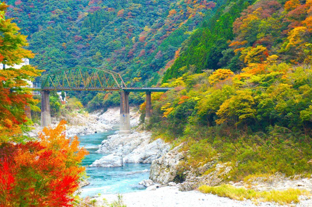 Tokushima_75