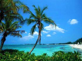 サンサルバドル島2