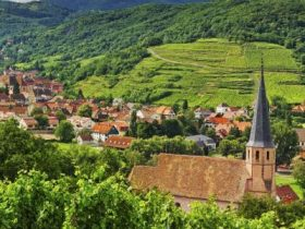 alsace-wine-route