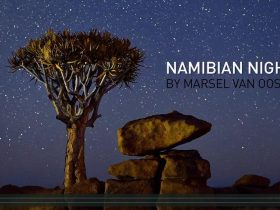 namibian-night