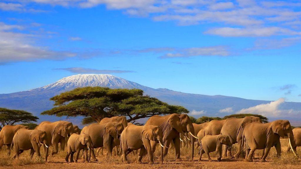 Kilimanjaro_eye