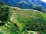 Rice Terraces_eye2