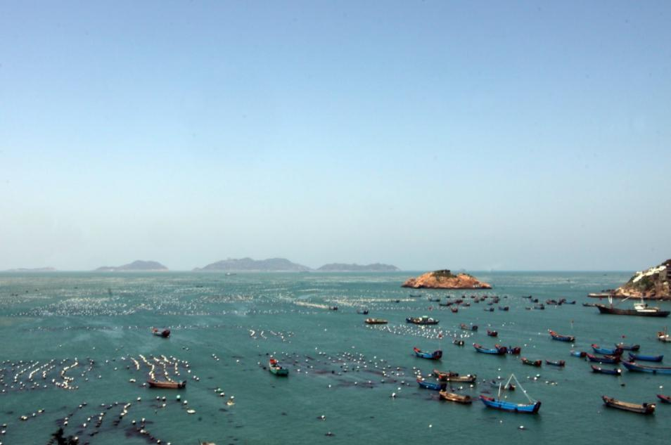 ジョウ泗列島4