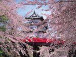 弘前公園3