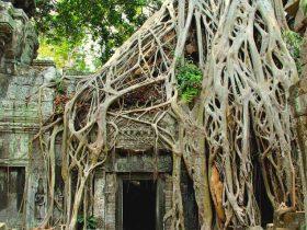 カンボジア2