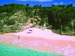 ピンクサンドビーチ1