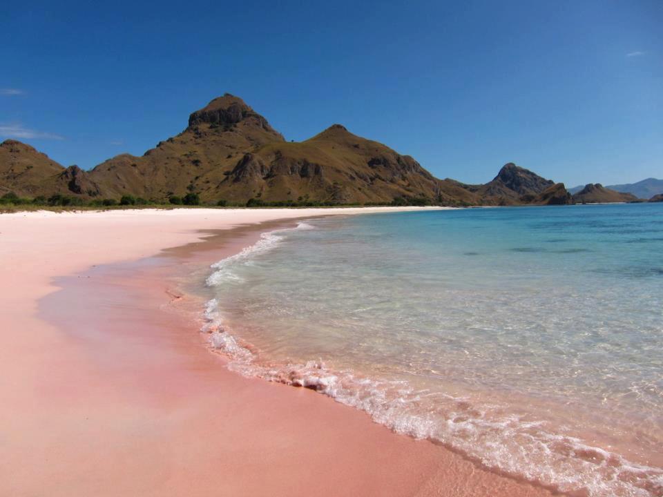 ピンクサンドビーチ インドネシア1
