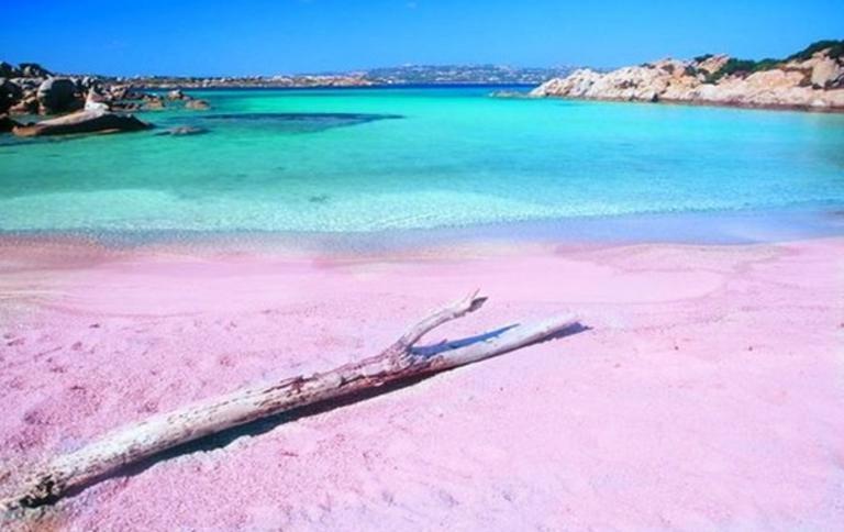 ピンクサンドビーチ バハマ1