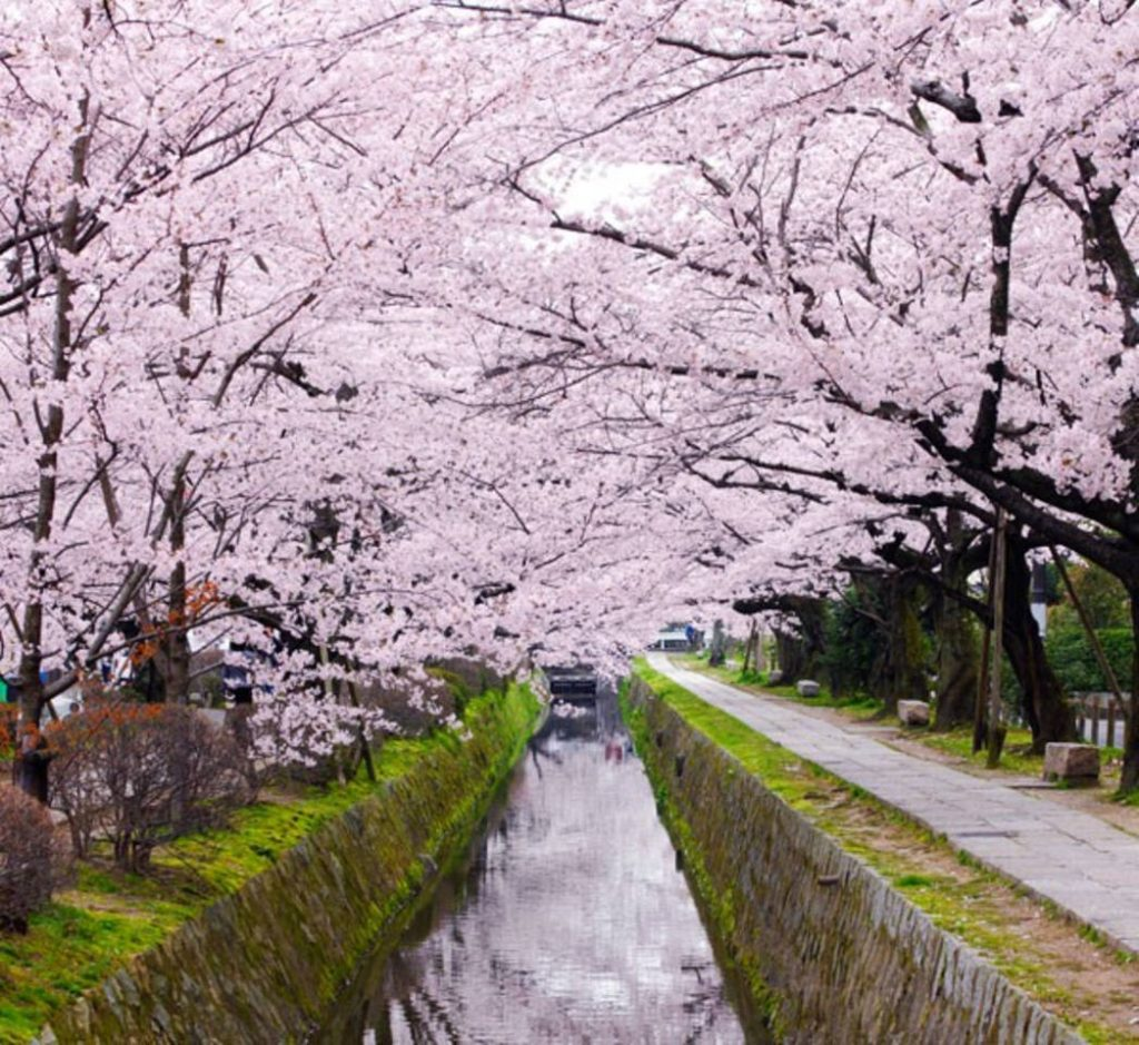 京都 デート2