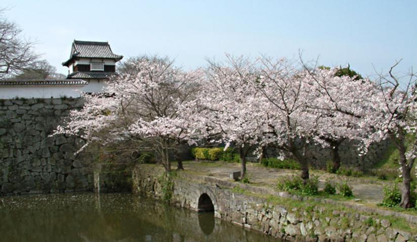 福岡県11