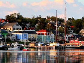 Lunenburg_eye