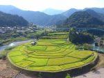 Aragishima_eye