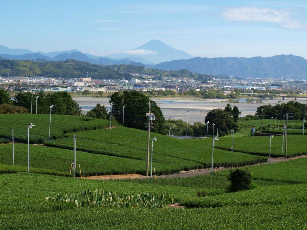 shizuoka_spot_20