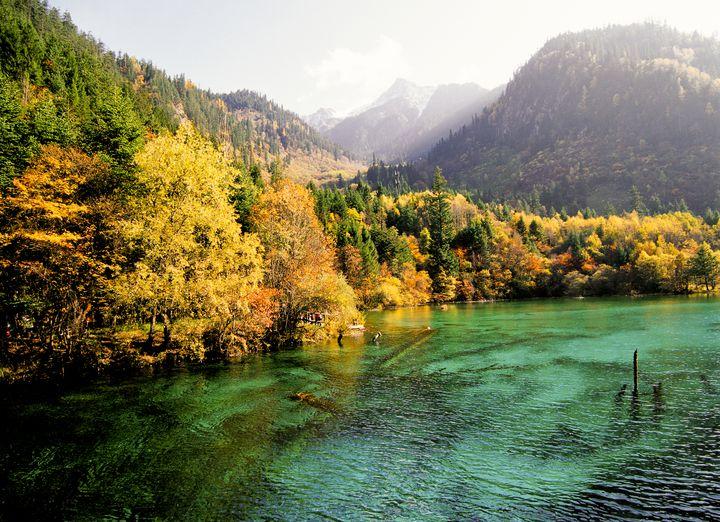 autumn_zekkei_11