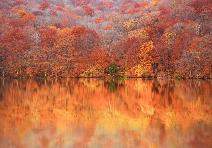 autumn_zekkei_15