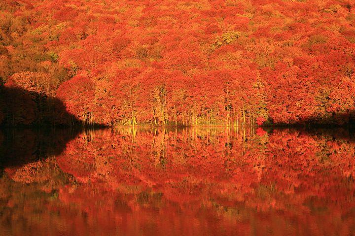 autumn_zekkei_16