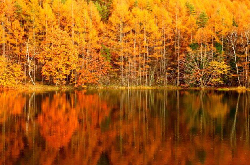 autumn_zekkei_17