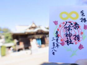 goshuin_eye