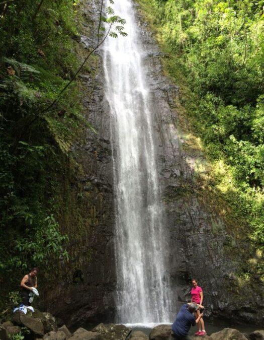 ハワイ マノア滝